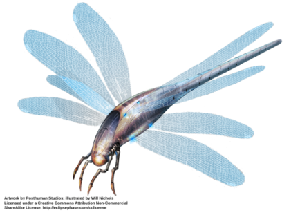DragonflyMorph_WillNichols leirthcoi5 uy.png